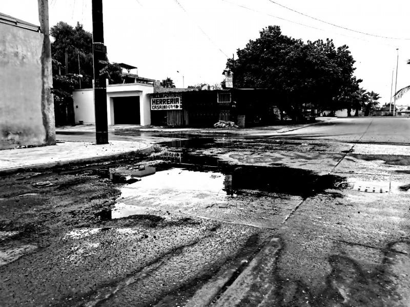 Brotes de aguas negras afectan en salud y economía