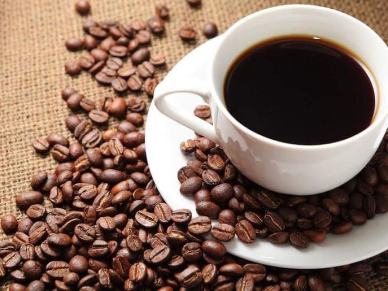 Buen año para el café Chiapaneco: productores