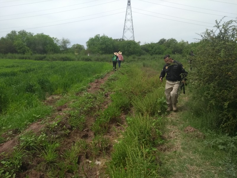 Buscadoras encuentra 8 cuerpos en el Campo 30