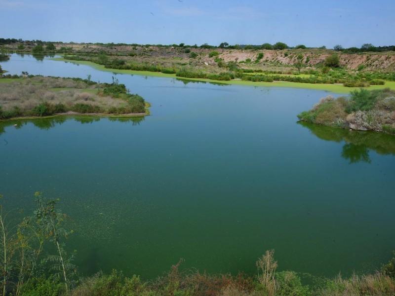 Buscan declarar humedales como Área Natural Protegida