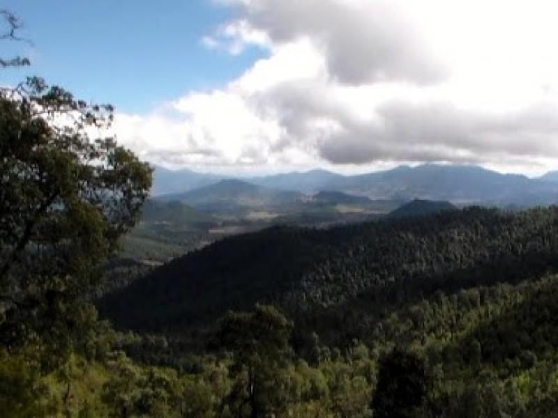 Buscan declaratoria de Cerro Grande como área natural protegida