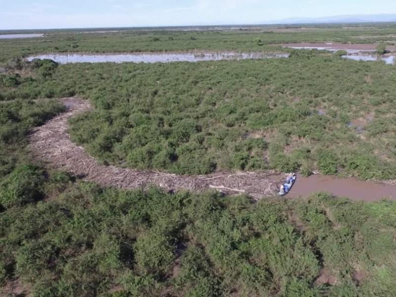Buscan dinamitar río San Pedro por taponamiento