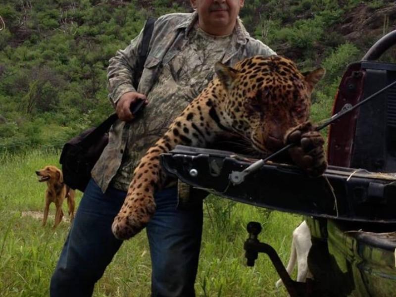 Buscan implementar acciones de inspección para evitar caza