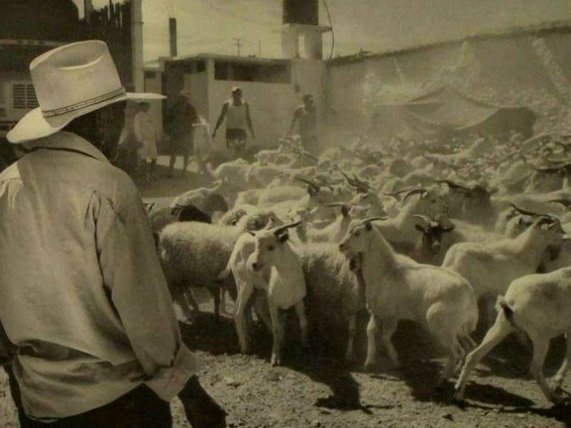 Buscan preservar riqueza natural de comunidades rurales