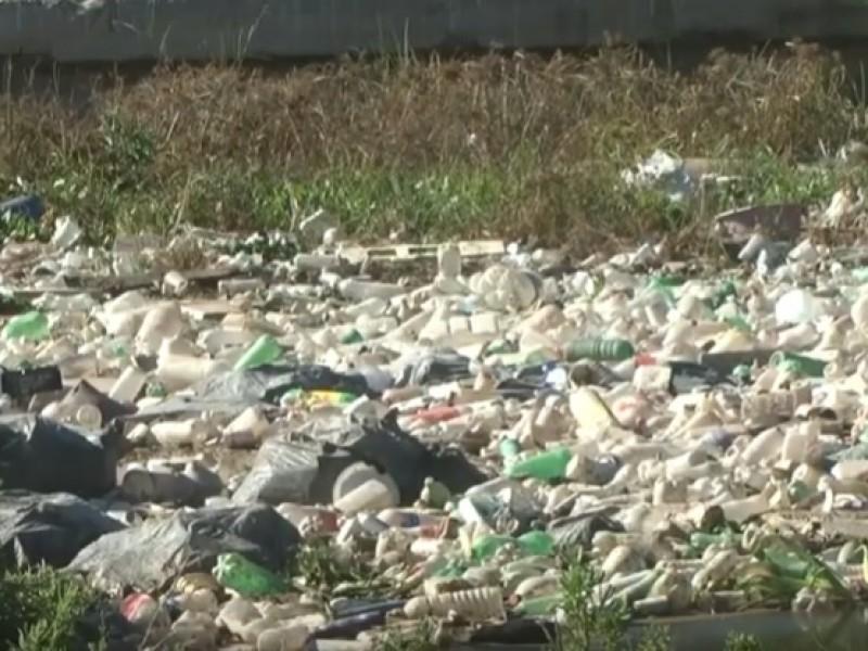 📹Buscan prohibición de bolsas de plástico en Sinaloa
