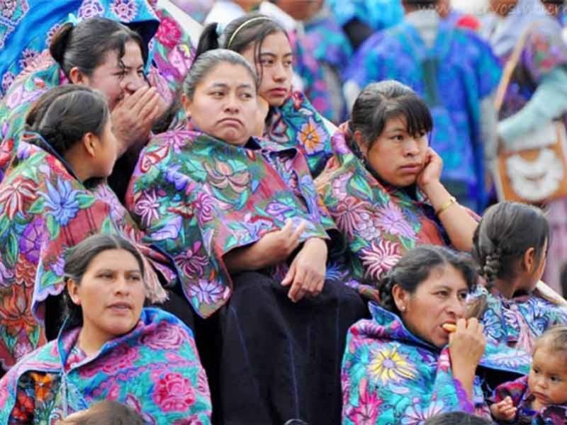Buscan proteger lenguas maternas