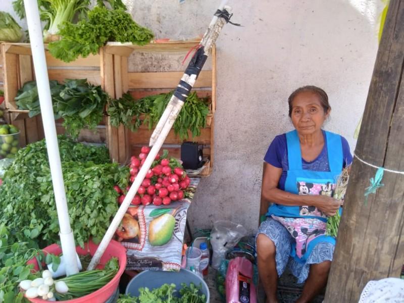 Buscan que Zihuatanejo sea reconocido como municipio de población indígena