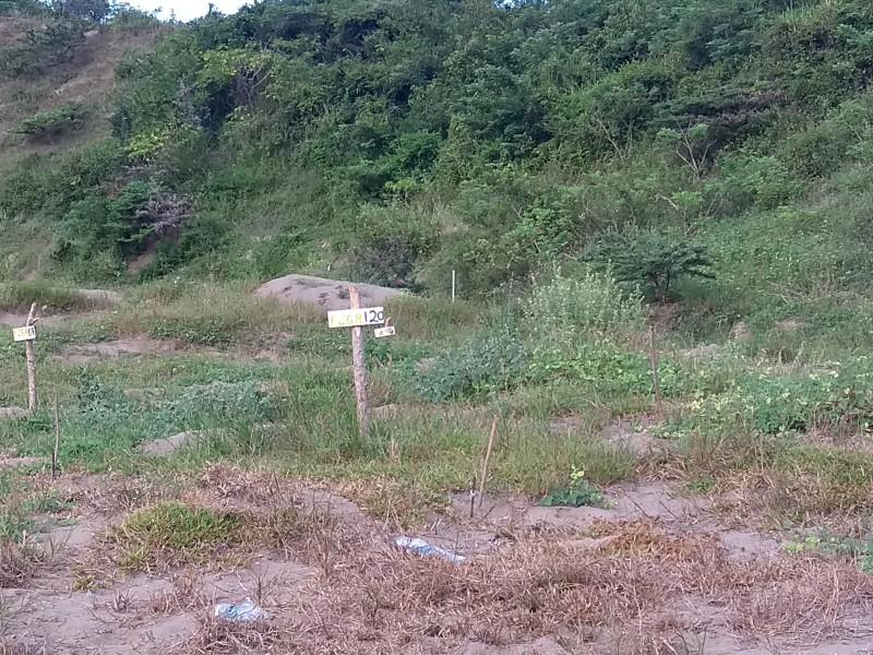 Buscarán fosas clandestinas en el km 13.5