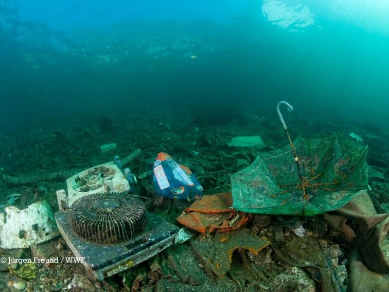 Buzos promueven limpieza del Mar de Cortès