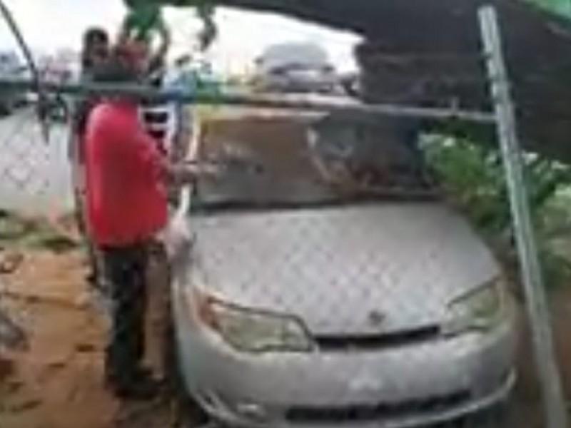 Cae árbol sobre 4 carros en Cajeme