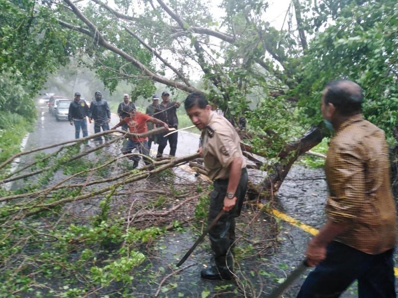 Caída de árboles y comunidades sin energía eléctrica tras
