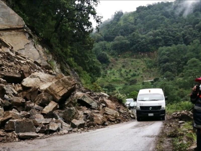 Caída de árboles y deslizamientos generados por lluvias en Puebla