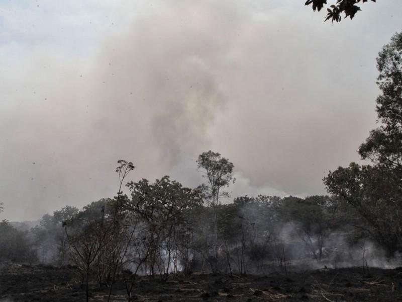 Caída de rayo provocó incendio en Bosque La Primavera