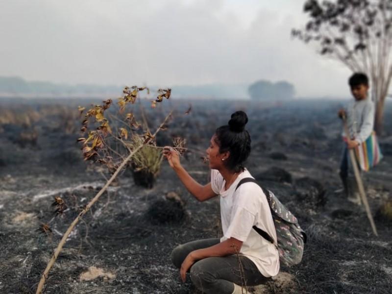Calidad del aire mejora pero incendios provocados continúan