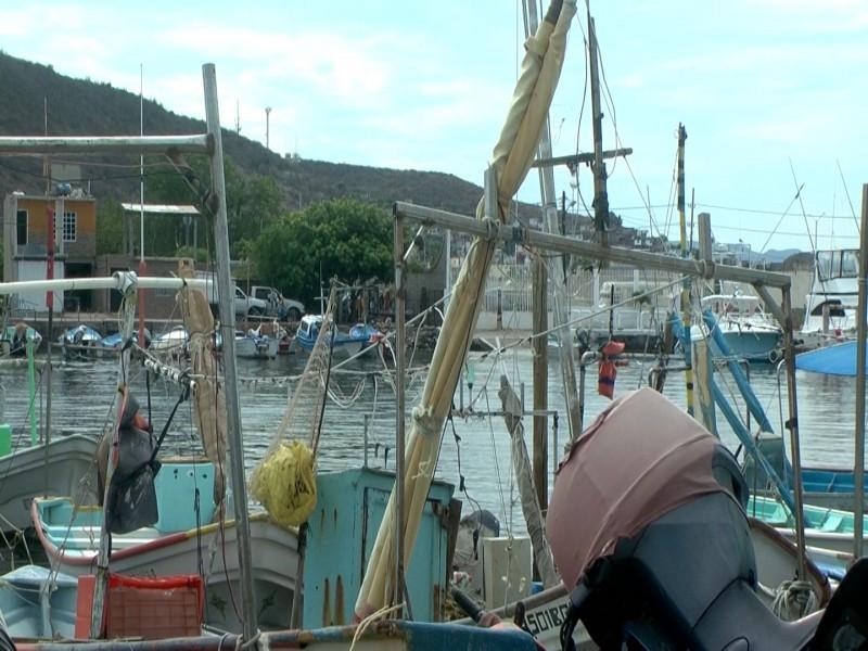 Calor, afecta producción pesquera