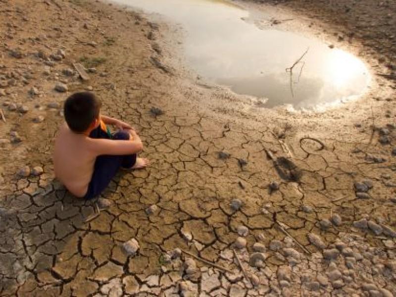 Cambio climático especies animales afectadas en México