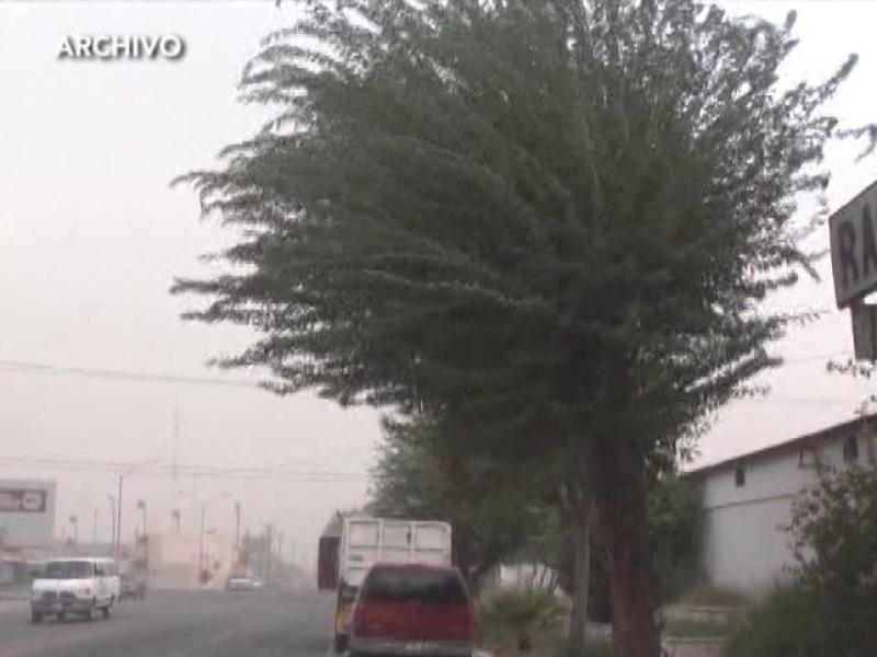 Cambio de clima afecta las estaciones del año