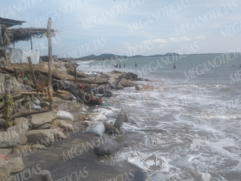 Cambios climáticos disminuyen áreas de playas en SC