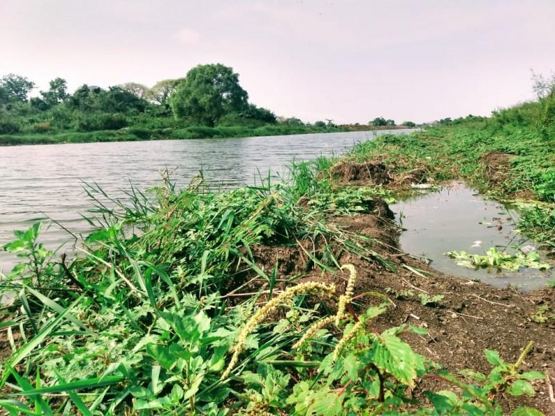 Cambios de uso de suelo, propician desplazamiento de fauna