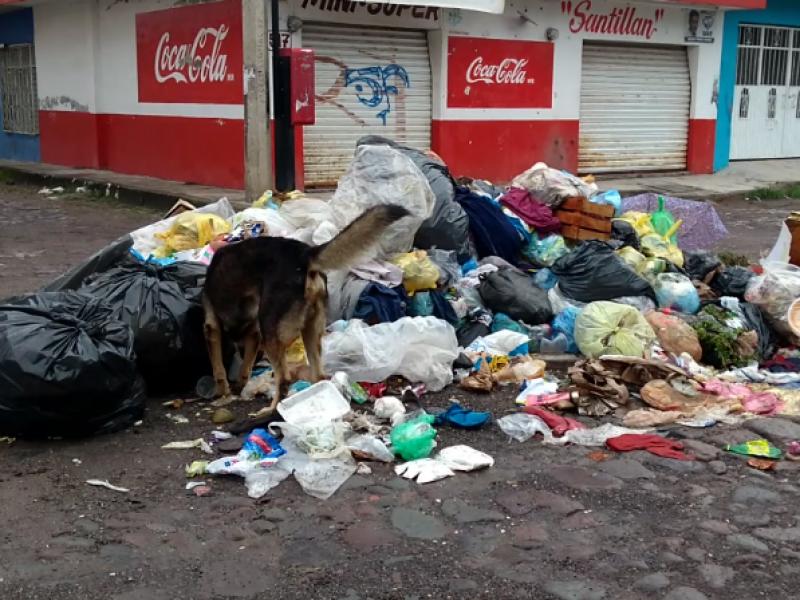 Camiones descompuestos causaron acumulación de basura