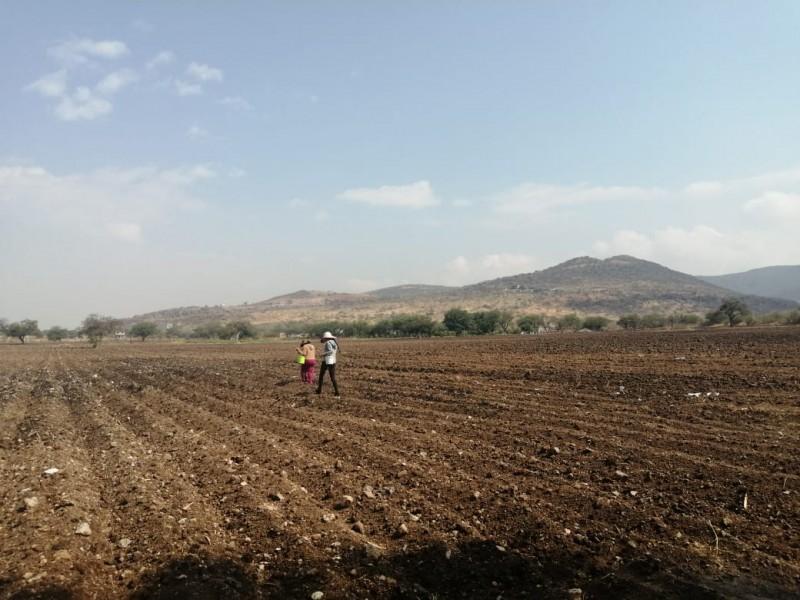 Campesinos a la espera de lluvias para sus cosechas