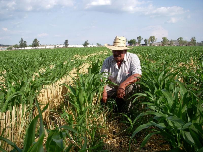 Campesinos acusan falta de programas sociales