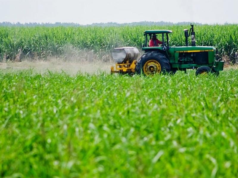 CANACINTRA pide a candidatos a gobernador apoyo a la agroindustria