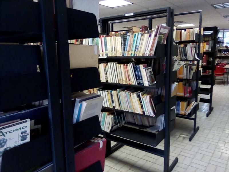 Celebra el mundo el día del bibliotecario
