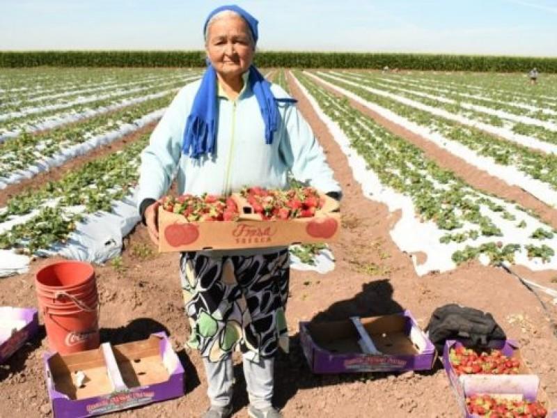 Celebra la ONU a las mujeres rurales