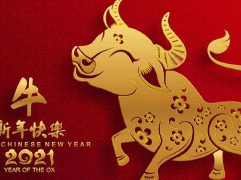 Celebran año nuevo chino, año del buey de metal