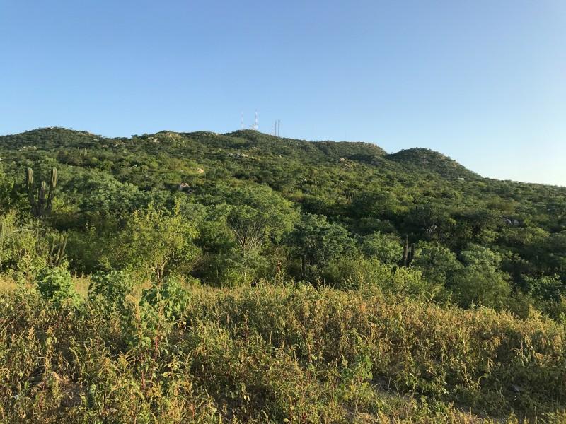 Cerro de las antenas, se ha convertido en una zonainsegura