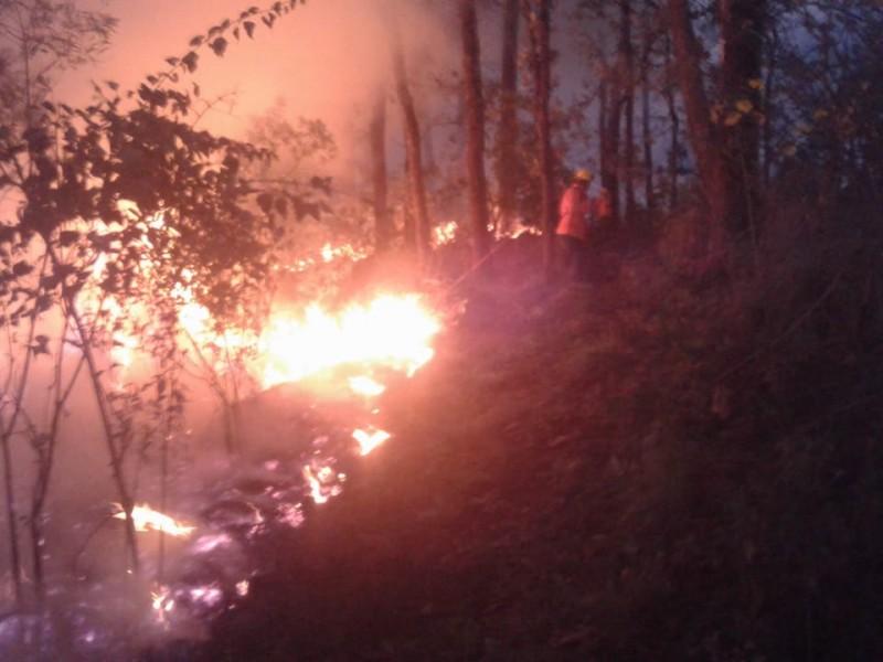 Cerros de Tepic, sufren los primeros incendios