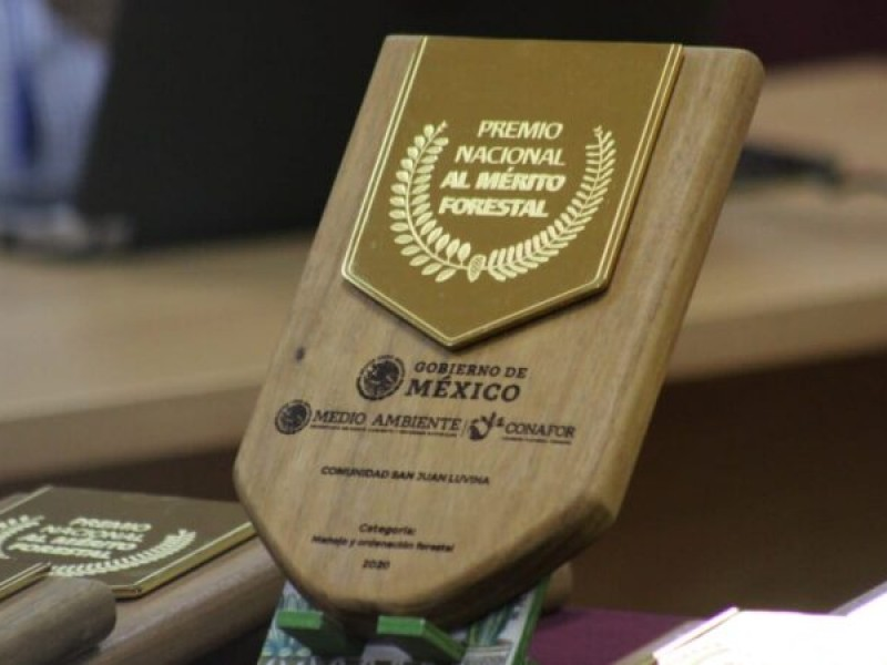 Chiapaneco es galardonado con Premio Nacional Forestal