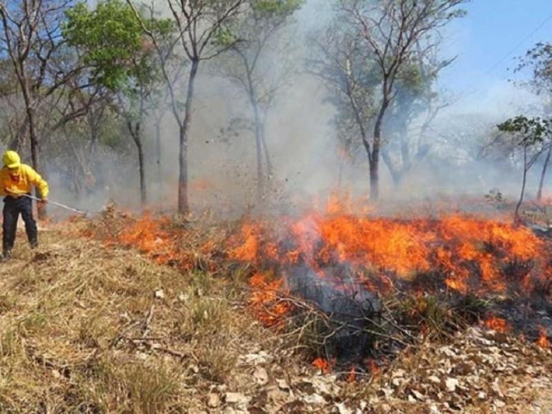 Chiapas creará mapa de riesgo contra incendios