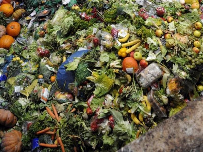 Chiapas desperdicia 3millones de toneladas de comida