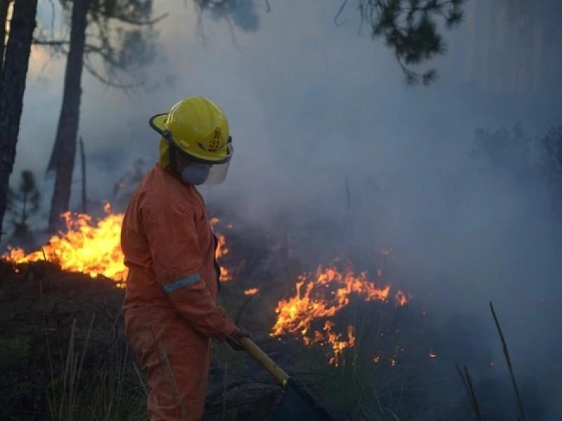 Chiapas en focos rojos por incendios