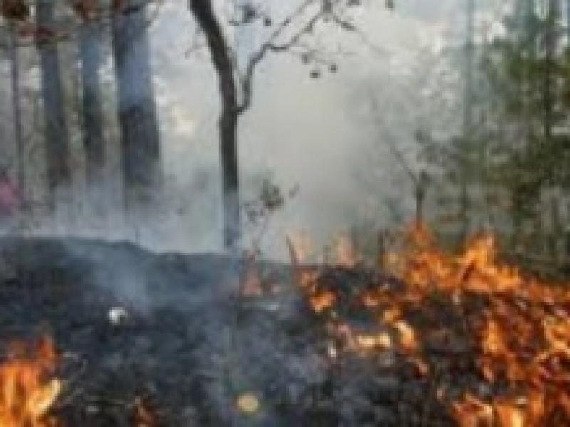 Chiapas entre los estados más afectados por incendios
