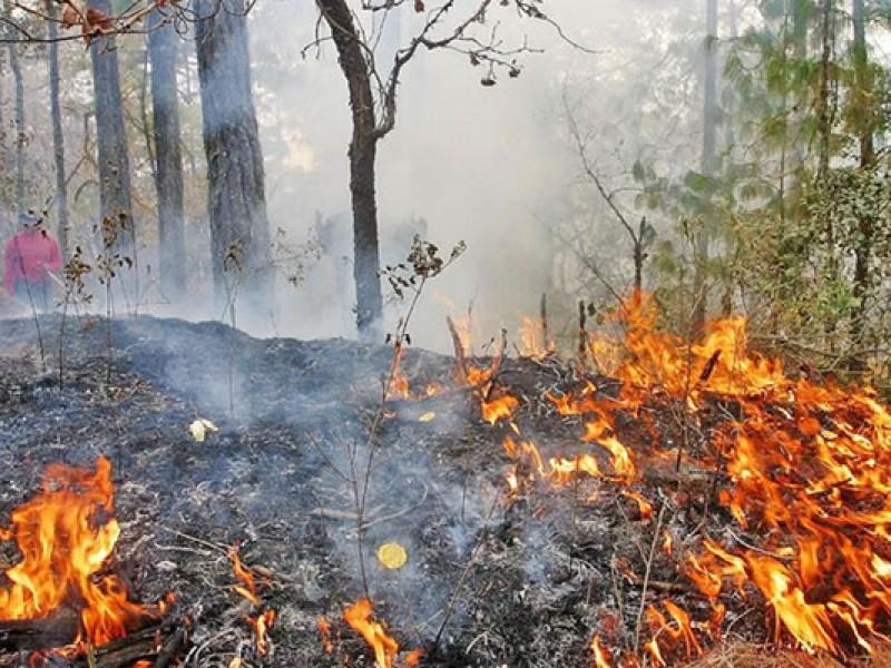 Chiapas, tercera entidad con más afectaciones por incendios forestales