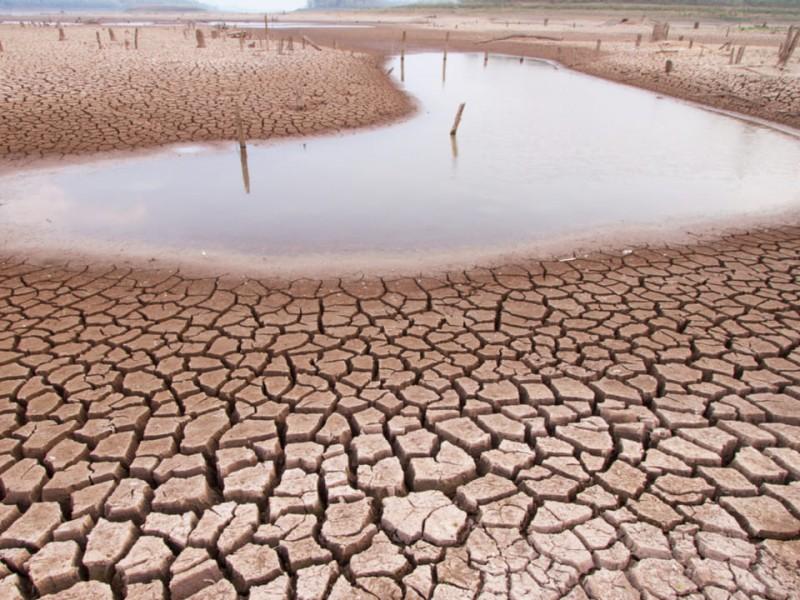 Chihuahua, en emergencia por sequía.