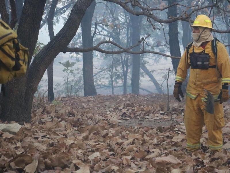 Cien hectáreas afectadas por incendio en La Primavera