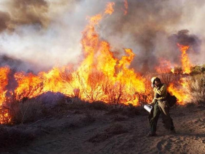 A pesar de lluvias hay 5 incendios activos en Chiapas