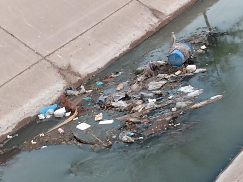 Ciudadanos demandan retirar basura del Dren Juárez