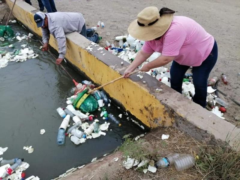 Ciudadanos emprenden acciones en cuidado del medio ambiente