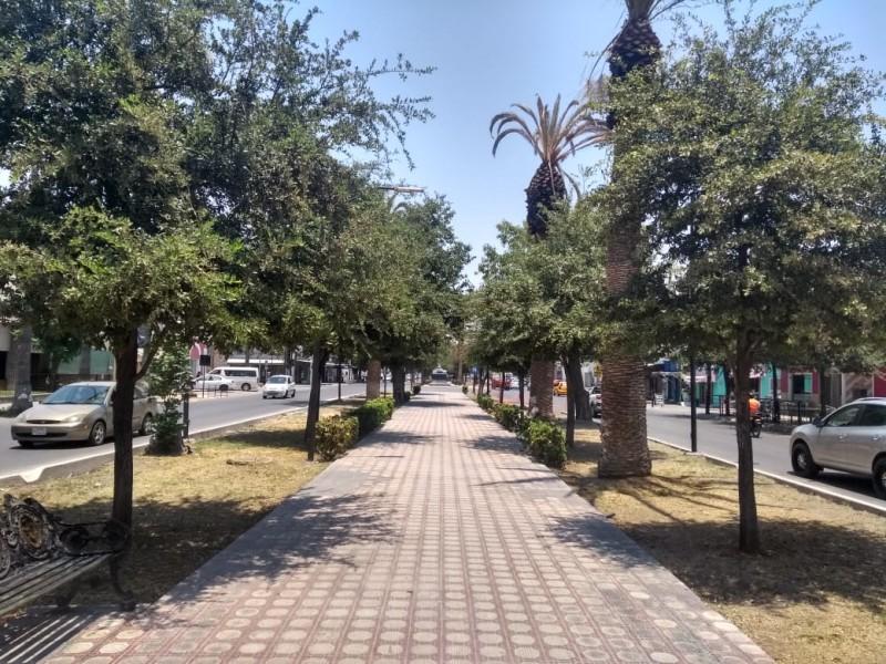 Ciudadanos manifiestan molestias por obras en Paseo Colón