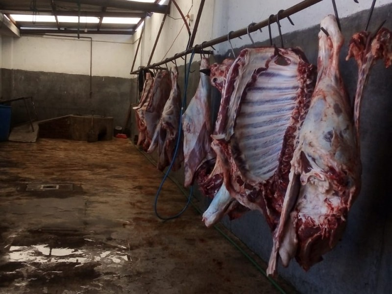Clausuran lugar de matanza clandestina en Pedro Escobedo