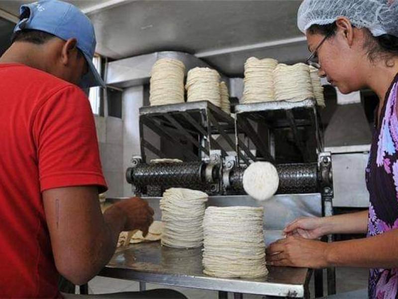 Cofece procederá contra tortillerías en Chiapas