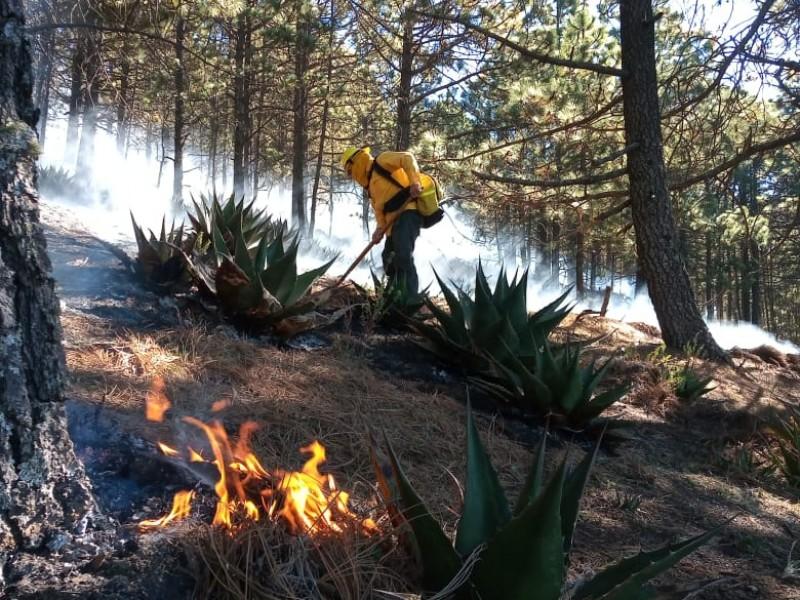 Combaten tres incendios forestales en áreas naturales protegidas de Jalisco