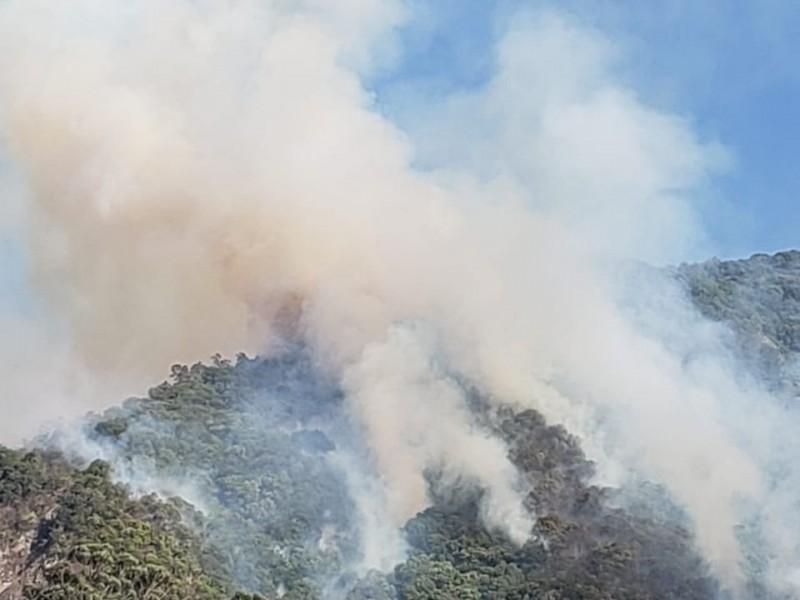 Combatientes controlaron incendio de cerro de San Juan