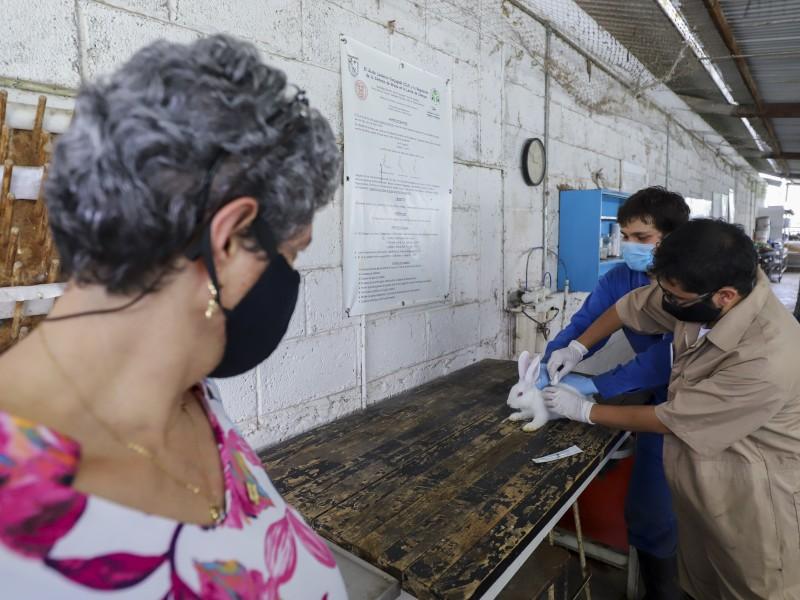 Comienza vacuna anti SARS CoV-2 de la UAQ con pruebas