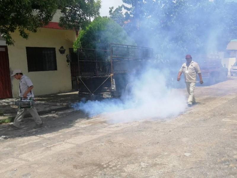 Comienzan operativos contra el dengue